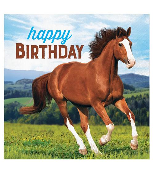 Happy Birthday Pferde